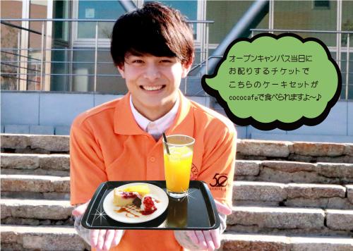 yamada_cake